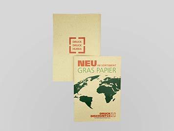 flyer-beidseitig-graspapier